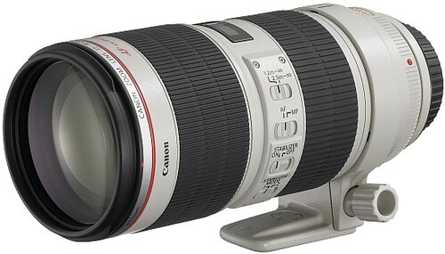 Canon EF 70-200mm f/2.8L IS II USM #2