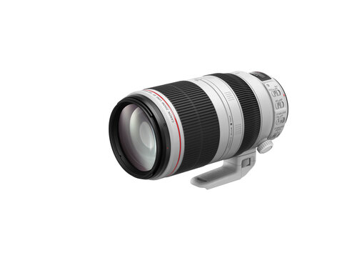 Canon EF 100-400mm f/4.5-5.6L IS II USM - 6