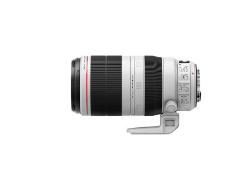 Canon EF 100-400mm f/4.5-5.6L IS II USM - 4
